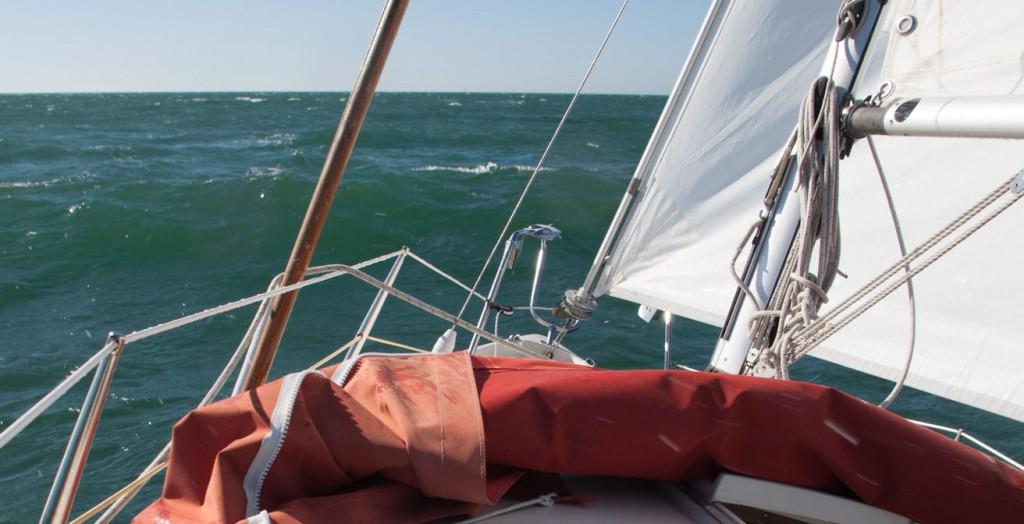 Segling i frisk vind